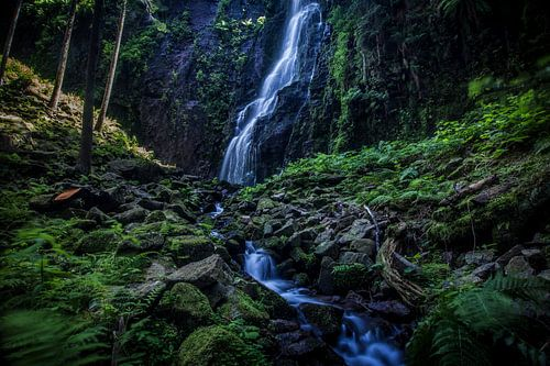 Schwarzwald, Wasserfall, Natur