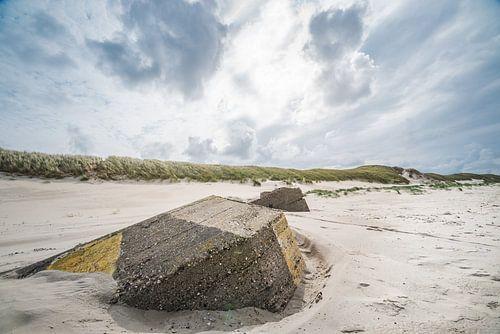 Noordzeestrand bij Slufter op Texel van
