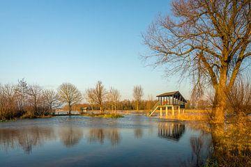 Hoogwater in de Groesplaat van Ruud Morijn