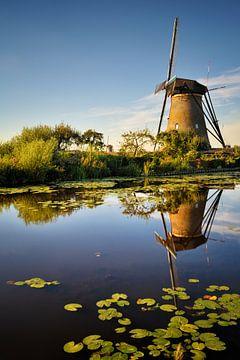 De windmolen van Rolf Schnepp