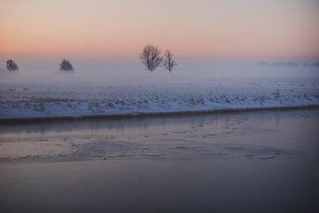 Mistig Sneeuwlandschap in Hollandse Polder (Leiderdorp) van Susanne Ottenheym