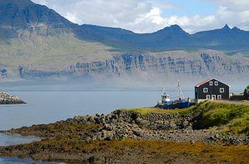 Boot in IJsland van Wouter Moné