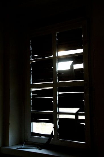 Donker of licht
