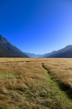 Eglinton Valley - Neuseeland von Maupacadabra Fotografie