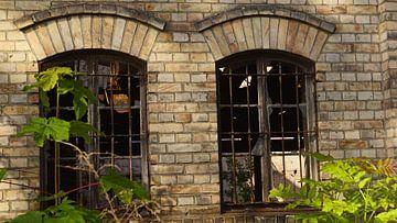 Ruin of the storage building of the Boellberg mill complex in Halle in Germany von Babetts Bildergalerie