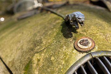 Jaguar motorkap met ornament, Urbex van Leoniek van der Vliet