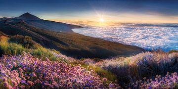 Landschaft über den Wolken von Teneriffa zum Sonnenuntergang. von Fine Art Fotografie
