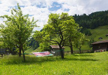 In Österreich träumen von Cynthia Hasenbos