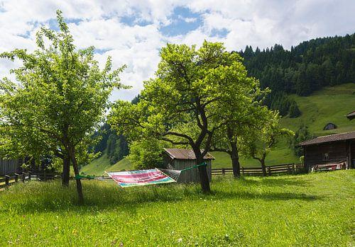 Wegdromen in Oostenrijk van Cynthia Hasenbos