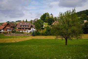 Dorf im Schwarzwald von Steven Van Aerschot