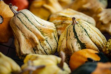 verzameling van meerdere sier kalebassen op een hersfttafel van Margriet Hulsker