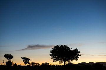 Schemering in Tanzania von Jeroen Middelbeek