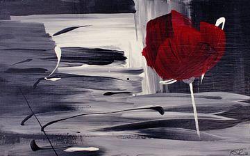 Rouge Velvet 01b van