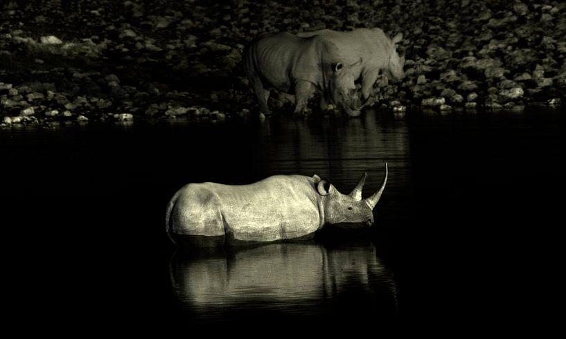Rhinos van BL Photography