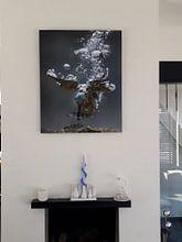 Kundenfoto: Eisvogel (ubter Wasser) von Jaap La Brijn, als xpozer