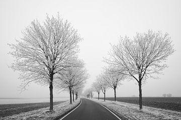Winter-Reisen von Keith Wilson Photography
