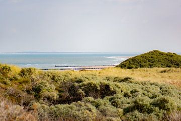 Noordzee vanuit de duinen van Tania Perneel