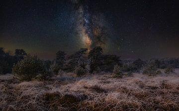 Eine wunderbare Übernachtung in der Natur von Mart Houtman
