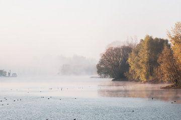 Herbstbäume am See entlang von Tania Perneel