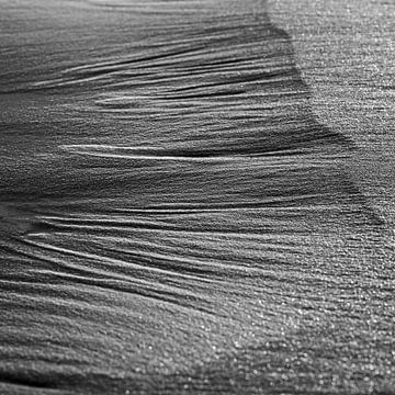 Sand auf See von Arjan van Duijvenboden