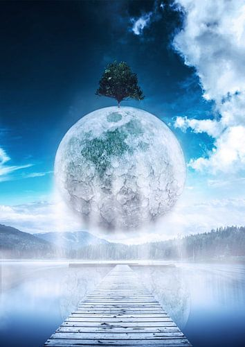 The lonely tree sur