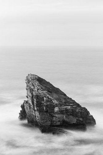 Eenzame rots