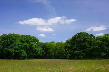Landschap van Thomas Jäger
