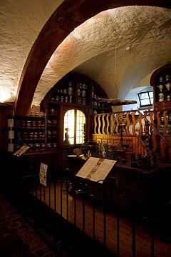 apotheek museum Heidelberg van joyce kool