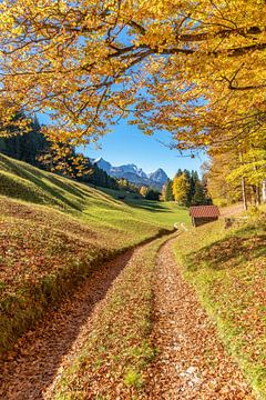 Herfst in de Beierse Alpen van Achim Thomae