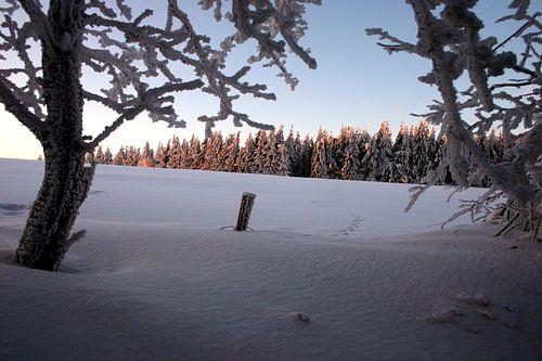 winter in the rhoen