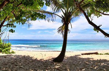 Traumstrand auf den Seychellen - Urlaub und Erholung von MPfoto71