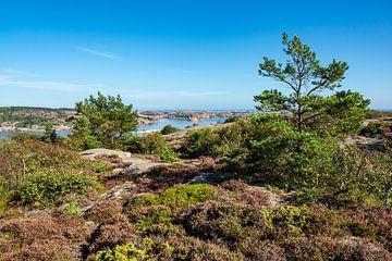 Uitzicht op de eilanden van de archipel voor de stad Fjällbacka in Zweden van Rico Ködder