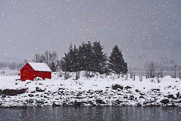 Winterlandschap aan de kust van Kai Müller