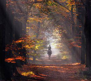 Herfst amazone