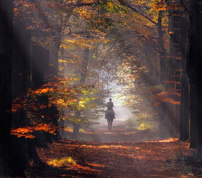 Herfst amazone van Robert Broeke