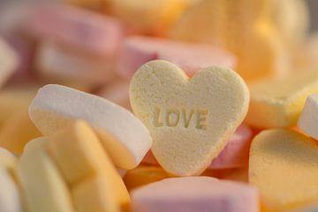 Sweet sweet love van