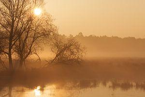 Morning moods II van Hans Koster