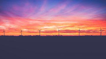 Sonnenuntergang im Noordoostpolder von Fotografiecor .nl