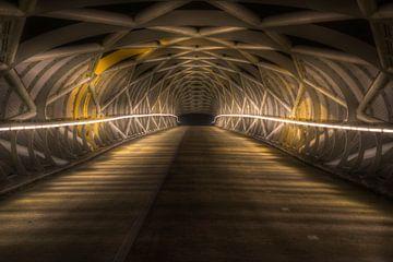 Fahrradbrücke De Netkous von Eus Driessen