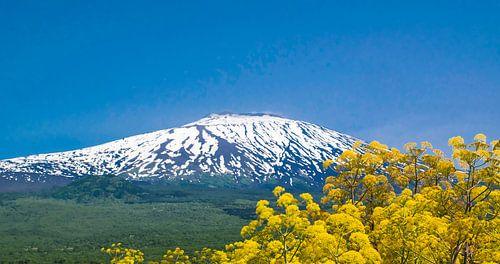 Snowy Seite des Vulkans Ätna in Sizilien im Frühjahr von Rietje Bulthuis