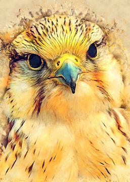 Falke Vogel Aquarell Kunst #falke von JBJart Justyna Jaszke
