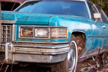 Cadillac - Fleetwood van David Bleeker