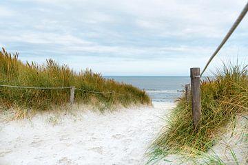 Der Weg zum Meer van Hannes Cmarits