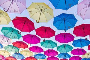 Een hemel van parapluutjes