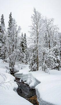 Beekje in het ijs, Finland van Rietje Bulthuis