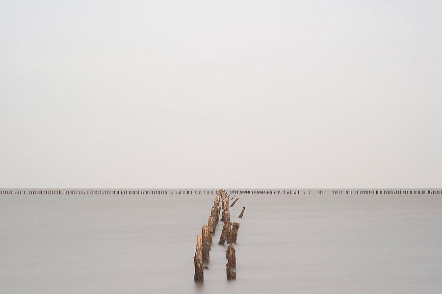 Silence II van Aline van Weert