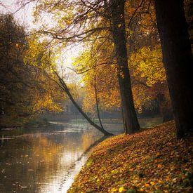 Herfst in Utrecht, De stadsbuitengracht te Utrecht in herfstige sferen (staand) van De Utrechtse Grachten