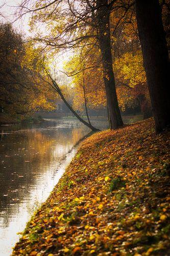 Herfst in Utrecht, De stadsbuitengracht te Utrecht in herfstige sferen (staand) van