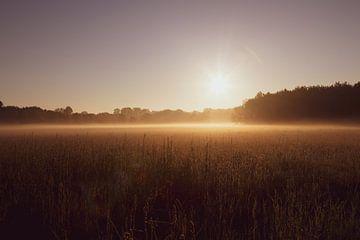 Hori(Sonne) von YvePhotography