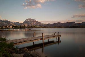 Alps Austria van